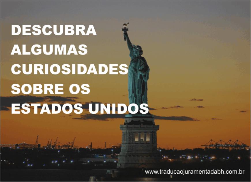 Curiosidades sobre os Estados Unidos (Na imagem tem a Estatua da Liberdade e ao fundo as luzes da cidade).